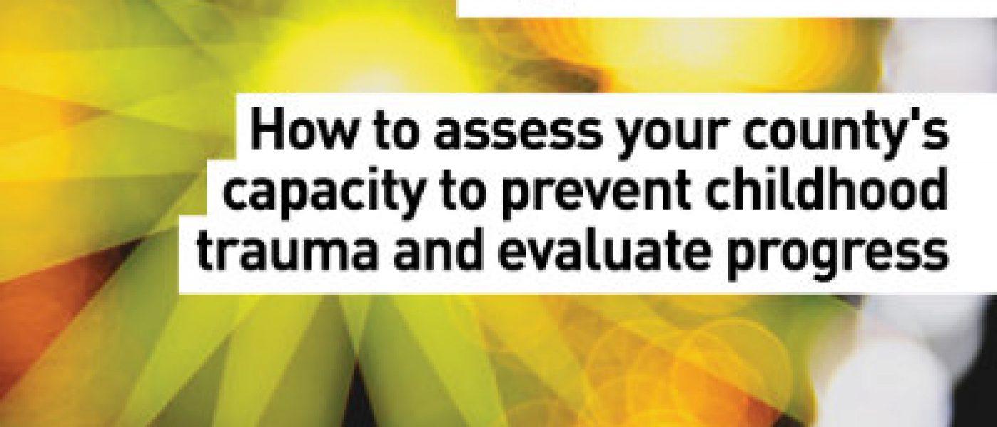 100Community_series_v1_cover_Assessment
