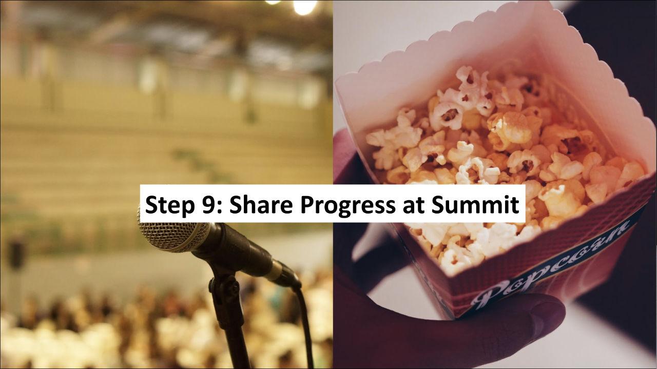Step 9: Sponsor a 100% Community Summit on Thriving Childhoods