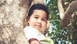 boy-tree12x6